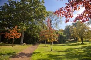photo-automne-S.Grossin-1-3