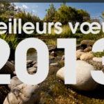 Tous mes voeux pour cette année 2013