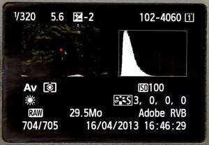 Voici l'histogramme d'une image sous-exposée, tout de la courbe est à gauche.