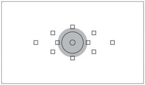 Mesure sélective ou pondérée centrale, la mesure se fait sur 6% de la surface du viseur