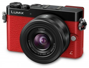 Lumix DMC GM5-FACE