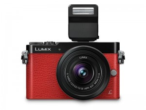 Lumix DMC GM5-FACE-FLASH