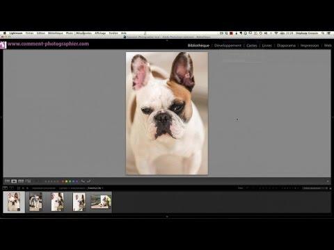 Comment créer des presets sur Lightroom