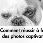 Comment réussir à faire des photos captivantes